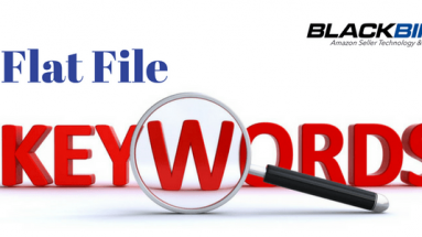 Flat Files to add more keywords to you amazon listing